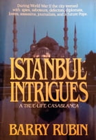 Istanbul Intrigues by Barry Rubin