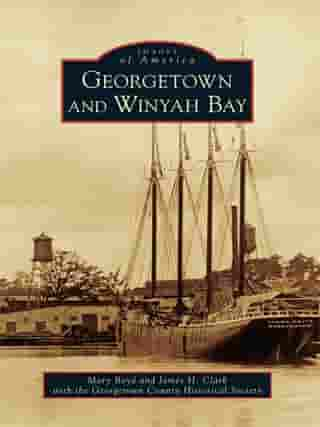 Georgetown and Winyah Bay by Mary Boyd