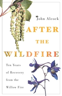 After the Wildfire: Ten Years of Recovery from the Willow Fire