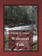Wahconah Falls by Charles M. Skinner