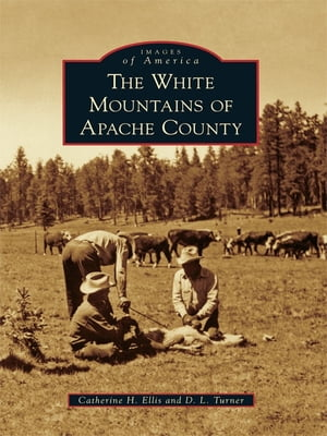 The White Mountains of Apache County by Catherine H. Ellis