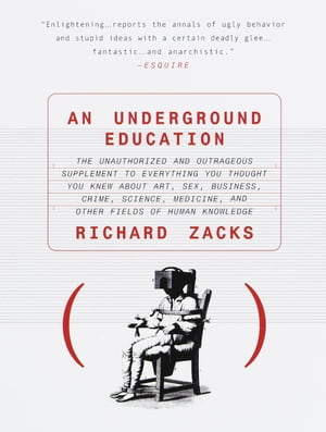 An Underground Education: The Unauthorized and Outrageous Supplement to Everything You Thought You Knew About Art, Sex, Business, Crime, Science, Medicine, and Other Fields by Richard Zacks
