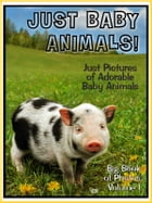 Just Baby Animal Photos! Big Book of Baby Animal Photographs & Pictures by Big Book of Photos