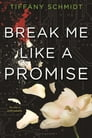 Break Me Like a Promise Cover Image
