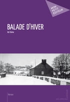Balade d'hiver by Val Dolne