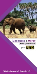 Goodness&Mercy Devotional 2: Year 2015 by Ntando Ncube