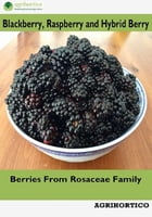 Blackberry, Raspberry and Hybrid Berry: Berries from Rosaceae Family by Agrihortico