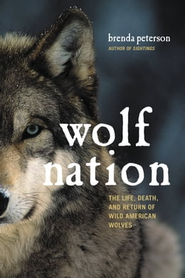 Book Wolf Nation: The Life, Death, and Return of Wild American Wolves by Brenda Peterson