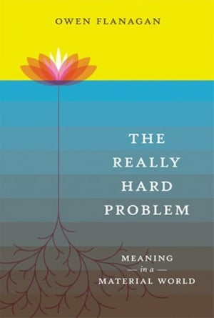 The Really Hard Problem: Meaning in a Material World Meaning in a Material World