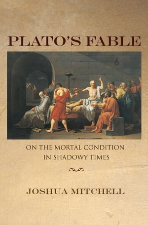 Plato's Fable On the Mortal Condition in Shadowy Times