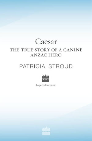 Caesar: The true story of a canine ANZAC hero