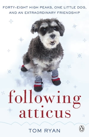 Following Atticus How a little dog led one man on a journey of rediscovery to the top of the world