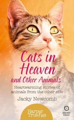 Book Cats in Heaven: And Other Animals. Heartwarming stories of animals from the other side. (HarperTrue… by Jacky Newcomb