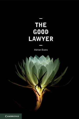 The Good Lawyer A Student Guide to Law and Ethics