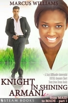 Knight in Shining Armani - A Sexy Billionaire Interracial BWWM Romance Short Story from Steam Books by Marcus Williams