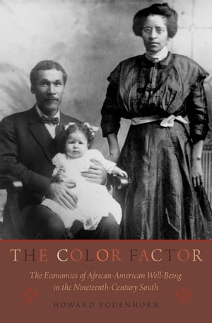 The Color Factor The Economics of African-American Well-Being in the Nineteenth-Century South