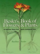 Besler's Book of Flowers and Plants: 73 Full-Color Plates from Hortus Eystettensis, 1613 by Basilius Besler