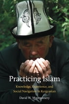 Practicing Islam: Knowledge, Experience, and Social Navigation in Kyrgyzstan by David W. Montgomery