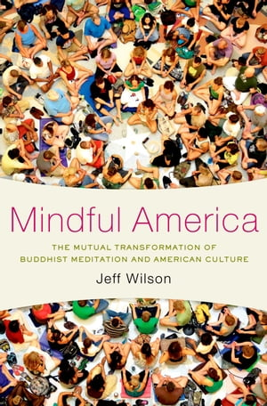 Mindful America The Mutual Transformation of Buddhist Meditation and American Culture
