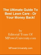 The Ultimate Guide To Body Language - Or Your Money Back! by Editorial Team Of MPowerUniversity.com