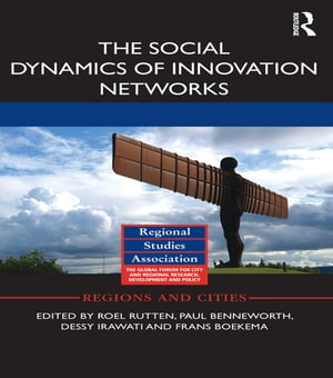 The Social Dynamics of Innovation Networks