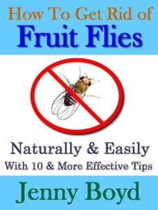 How To Get Rid of Fruit Flies: Naturally & Easily