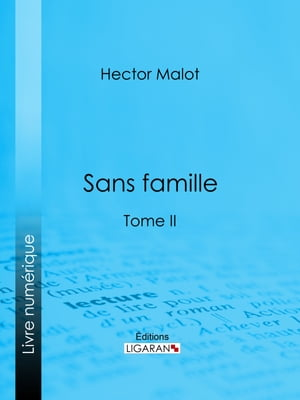 Sans famille: Tome II