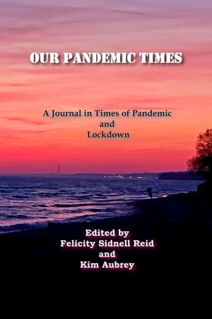 Our Pandemic Times: A Journal in Times of Pandemic and Lockdown by Northumberland Festival of the Arts