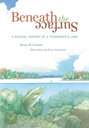 Beneath The Surface A Natural History of a Fisherman's Lake