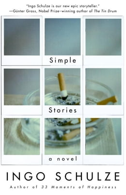 Book Simple Stories by Ingo Schulze