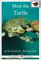 Meet the Turtle: Educational Version by Caitlind L. Alexander