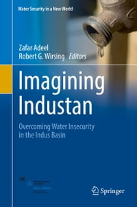Imagining Industan: Overcoming Water Insecurity in the Indus Basin