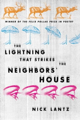 Book The Lightning That Strikes the Neighbors' House by Lantz, Nick