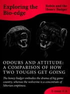 Odours And Attitude: A Comparison Of How Two Toughs Get Going by Robin and the Honey Badger