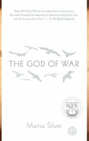 The God of War: A Novel by Marisa Silver
