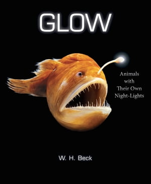 Glow Animals with Their Own Night-Lights