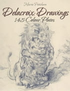 Delacroix: Drawings 145 Colour Plates by Maria Peitcheva