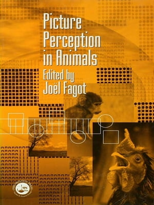 Picture Perception in Animals