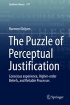 The Puzzle of Perceptual Justification: Conscious experience, Higher-order Beliefs, and Reliable Processes by Harmen Ghijsen