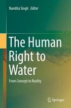 The Human Right to Water: From Concept to Reality by Nandita Singh