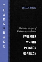 Tears of Rage: The Racial Interface of Modern American Fiction-Faulkner, Wright, Pynchon, Morrison