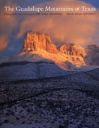 The Guadalupe Mountains of Texas by Michael  Allender