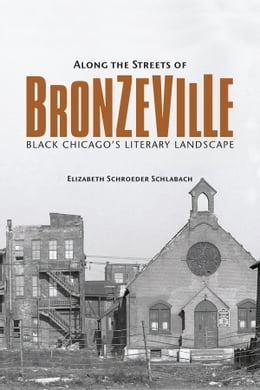 Book Along the Streets of Bronzeville: Black Chicago's Literary Landscape by Elizabeth Schroeder Schlabach