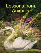 Lessons from Animals