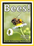 Just Bee Photos! Big Book of Photographs & Pictures of Bees, Vol. 1 by Big Book of Photos