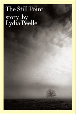 Book The Still Point by Lydia Peelle