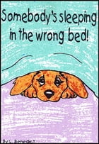 Somebody's Sleeping in the Wrong Bed by Lance Benedict