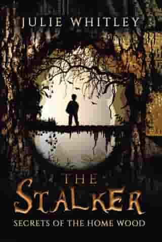 The Stalker: The Secrets of the Home Wood by Julie Whitley
