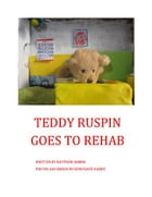 Teddy Ruspin Goes To Rehab by Matthew Harris