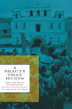 A Beauty That Hurts Life and Death in Guatemala,  Second Revised Edition